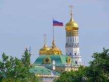 Veronderstellingskathedraal van Moskou het Kremlin Stock Afbeelding