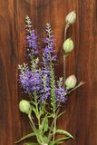 Veronica long-leaved violet color lies on a wooden background of black walnut. Minimalism. Beautiful summer wildflowers. vertical royalty free stock photos