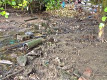 Verontreinigd mangrovemoeras Royalty-vrije Stock Afbeeldingen
