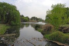 Verontreinigde rivier Royalty-vrije Stock Foto's