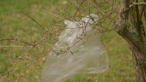 Verontreiniging van plastieken ter plaatse Het plastic afval hangt op een tak en fladdert in de wind Milieuvriendelijke transport stock videobeelden