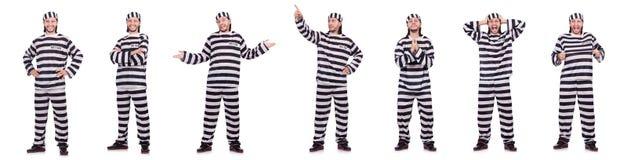 Veroordeel misdadiger in gestreepte die eenvormig op wit wordt geïsoleerd royalty-vrije stock foto