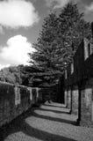 Veroordeel ruïnes, het Eiland van Norfolk stock afbeelding
