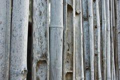 Verouderde de omheining van het bamboe Royalty-vrije Stock Afbeeldingen