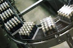 Verpackung des Bieres Stockfoto