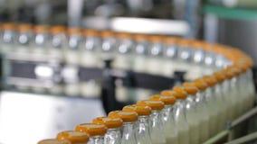 Verpakkende flessenlijn in de melkindustrie stock video