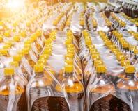 Verpakking van plastic flessen Stock Foto's