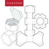 Verpakkingsontwerp Vectorillustratie van doos pakketmalplaatje Ge?soleerde Witte Kleinhandelsspot omhoog vector illustratie