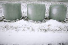 Verpakte hooibalen in sneeuw stock foto's