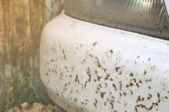 Verpletterd insect op autobumper en radiator Verpletter de muggen en de muggen bij de voorzijde van het voertuig stock fotografie
