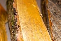 Verpletterde de brandstof rustieke van de logboek vlotte oppervlakte natuurlijke vlotte materiële nadruk als achtergrond in het c royalty-vrije stock fotografie