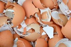 Verpletterde eierschalen Stock Afbeeldingen