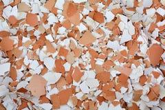Verpletterde eierschalen Stock Foto's