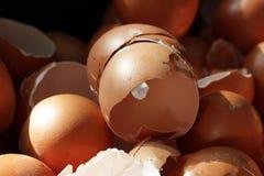Verpletterde eishells, realistische gebroken aard, schade op Pasen-eierschalen, achtergronden, biologisch troepafval van restaura stock foto's