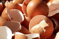 Verpletterde eishells, realistische gebroken aard, schade op Pasen-eierschalen, achtergronden, biologisch troepafval van restaura royalty-vrije stock afbeelding