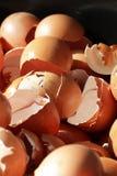 Verpletterde eishells, realistische gebroken aard, schade op Pasen-eierschalen, biologisch troepafval van restaurant royalty-vrije stock fotografie