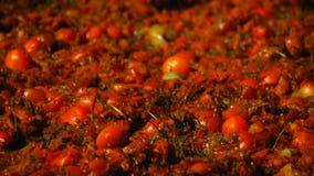 Verpletterde tomaten, close-up, Festival van tomaten stock video