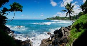 Verpletterende Golven op Caraïbisch strand. royalty-vrije stock afbeelding