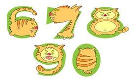 Verrückte Katzen auf grünen Zahlen: 6 - 0 Satz Lizenzfreie Stockfotos