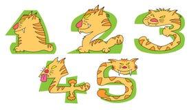 Verrückte Katzen auf grünen Zahlen: 1 - 5set Stockfotografie