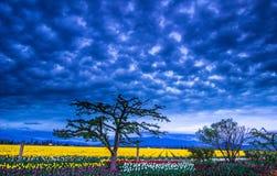 Verrückter Himmel über dem Bauernhof stockfoto