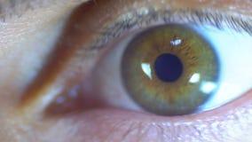 Verrückter und Furcht-Blick des menschlichen Auges stock video footage
