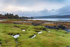 Verrühren Sie Küstenlinie stockfotos