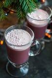 Verrührte heißes Alkoholgetränk des Weihnachtswinterbonbons Rotwein Stockbild
