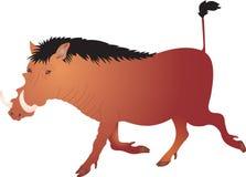 Verraco salvaje stock de ilustración