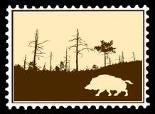 verraco salvaje en sellos stock de ilustración