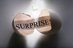 Verrassing! Stock Afbeelding