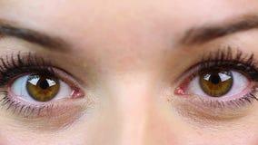 Verraste jonge vrouw die de camera onderzoeken Perfecte Make-up Close-up stock video