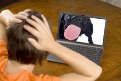 Verraste vrouw en laptop veiligheid Royalty-vrije Stock Foto's