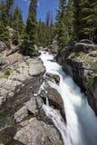 Verrückter Nebenfluss fällt Wyoming Lizenzfreie Stockfotografie