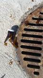 Verre à bouteilles cassé pointu par le drain rouillé de tempête dans le parking images libres de droits