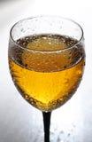 Verre à vin Photographie stock libre de droits