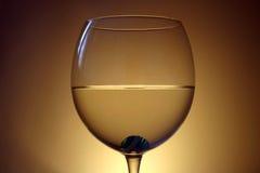 Verre à vin Image stock