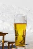 Verre avec de la bière Photos stock