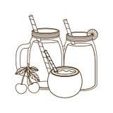 Verre avec l'orange de boissons et la noix de coco de l'eau illustration stock