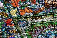 Verre coloré dans Xcaret, Mexique Photographie stock libre de droits