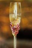 Verre d'anneaux de mariage d'amour de champagne Photographie stock