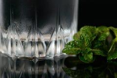 Verre d'eau douce et de feuilles en bon état sur un fond noir Fin vers le haut image stock