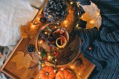 Verre d'usines de cuisson à la vapeur chaudes de thé et d'automne photos stock