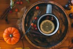 Verre d'usines de cuisson à la vapeur chaudes de thé et d'automne sur la table en bois photographie stock libre de droits