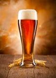 Verre de bière photo stock