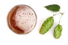 Verre de bière avec le houblon en cônes d'isolement sur le fond blanc Vue supérieure Photos stock