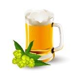 Verre de bière avec le houblon en cônes Photo stock