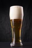 Verre de bière blonde Photo libre de droits