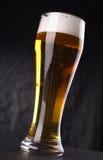 Verre de bière blonde Photos libres de droits
