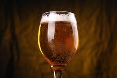 Verre de bière blonde Images libres de droits